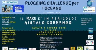 Anche Reggio partecipa alla Giornata Mondiale dell'Oceano